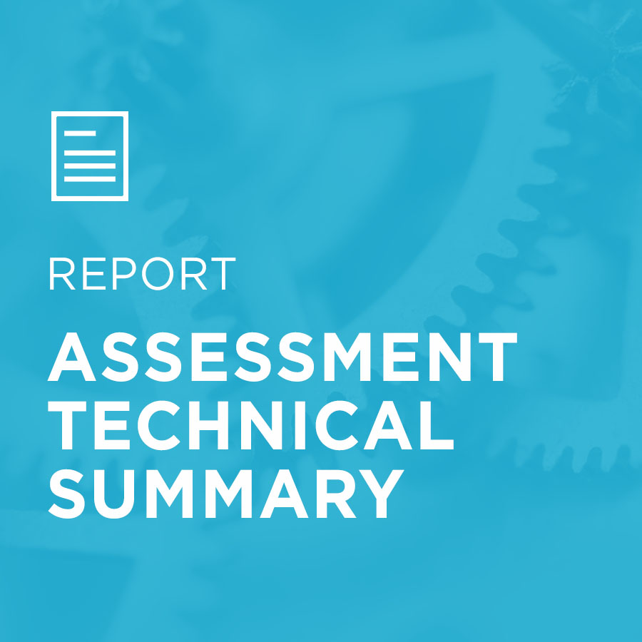 Image for Assessment Technical Summary portfolio entry