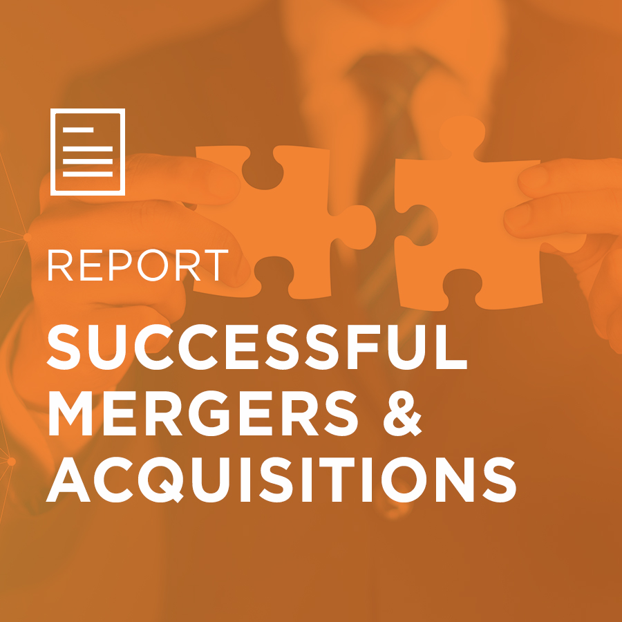 Image for Successful Mergers & Acquisitions portfolio entry